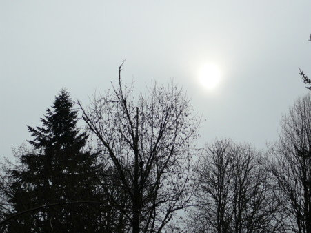 wintersun.jpg