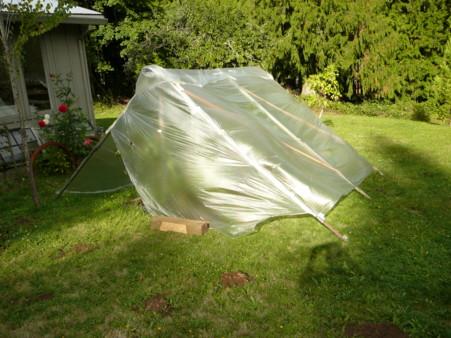 tomato tent