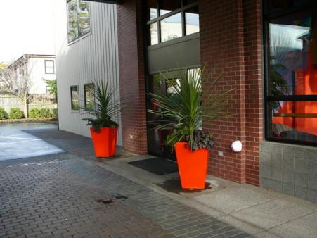 entry pots