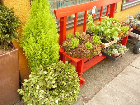red bench with greenery