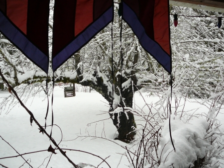 snow scene with flags