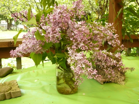 bouquet of lilacs