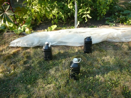 black painted water jugs and sheet plastic