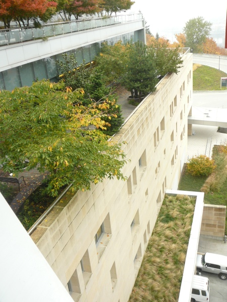 terraces and roof gardens