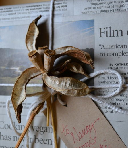 lily and poppy pods with newsprint