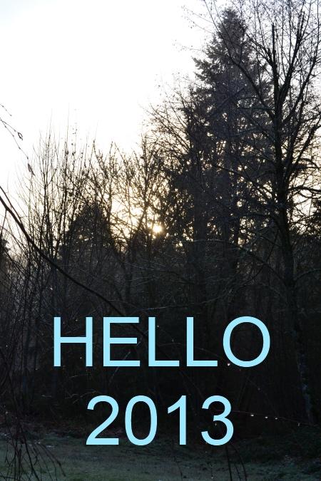 hello 2013