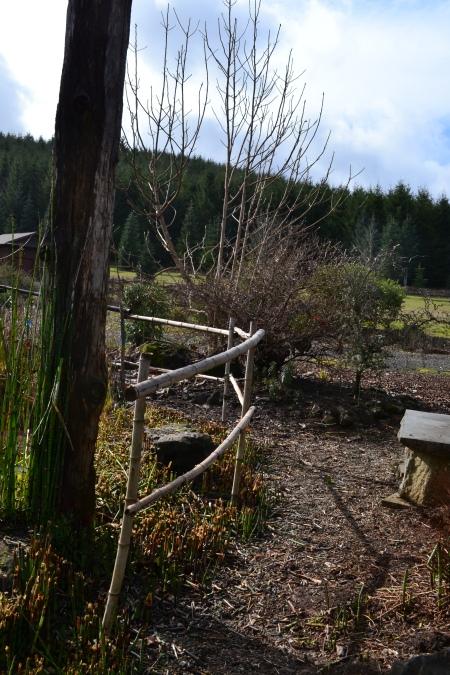 fence around pond