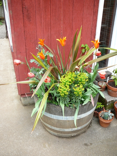 tub with tulips