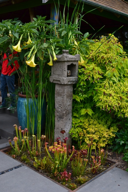 floramagoria lantern