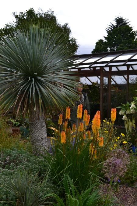 floramagoria greenhouse