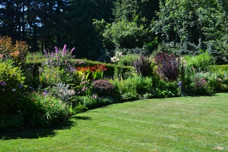 big flower and shrub border