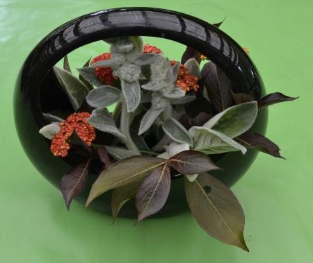 bouquet, back