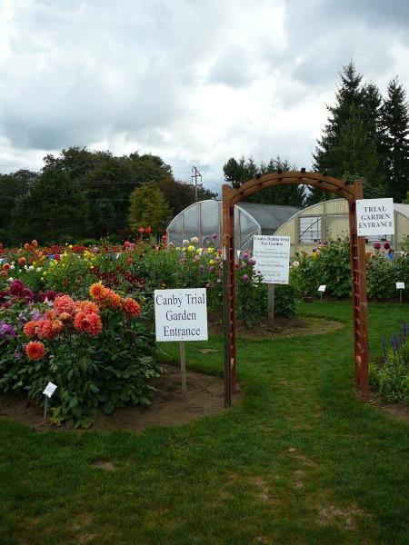 Trial Garden