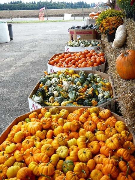 farmstand goods