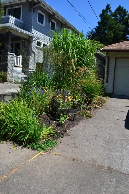 driveway garden