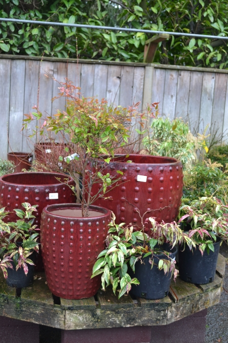 red pots