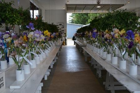 long table displays