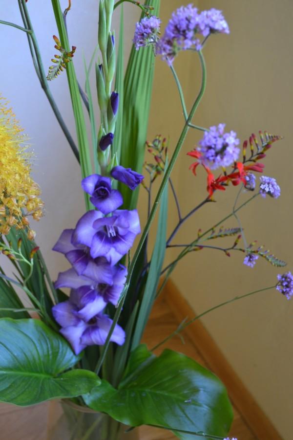 Verbena boneriensis & Gladiolus