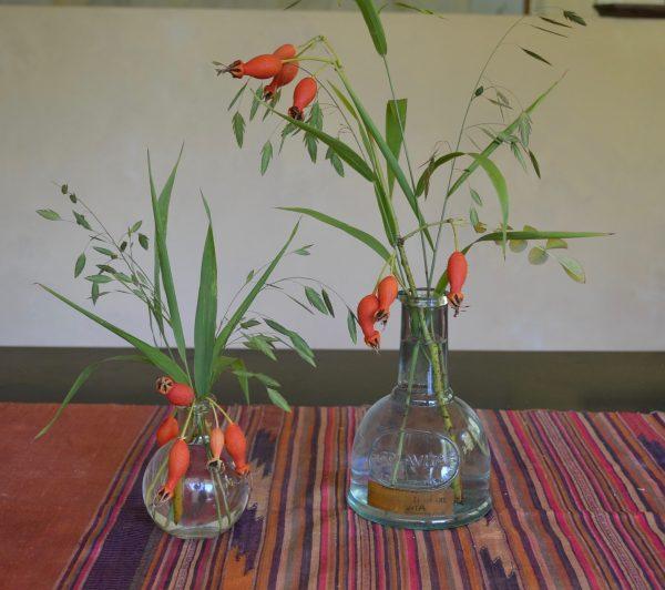 Rosa moysoii geranium hips & Chasmanthium latifolium